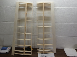 Wing Skeletons 1-8-13