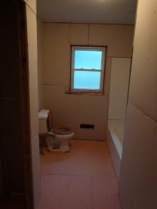 Bathroom 5-18-13