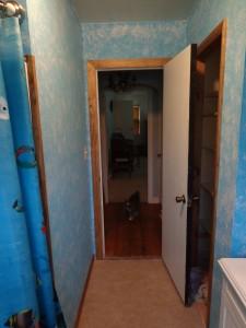 Almost Finished Bathroom Door