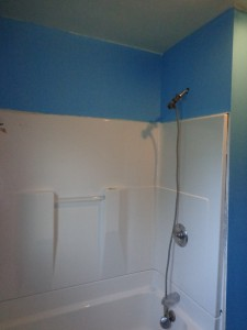 Blue Bathroom Shower