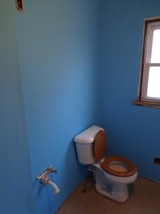 Painted Bathroom Toilet