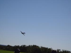 Fun Fly - Cliff 6