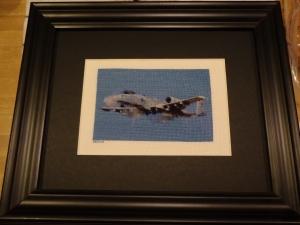 Warthog Framed 12-24-13
