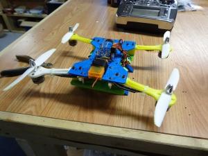 3D Printed Quad