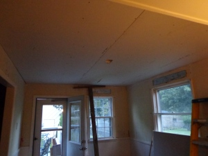 Dining Room Ceiling - 1