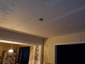 Dining Room Ceiling - 3
