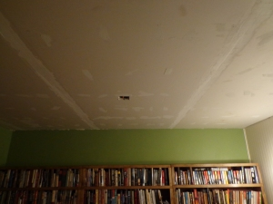 Library Ceiling - 1