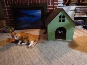 CNC Router Cat House