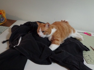 Sewing Room Supervisor - Chester