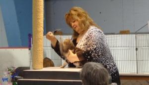 Cat Show Contestant