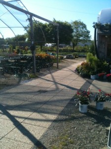 Garden Center Outside