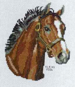 Ian's Square 1-31-06