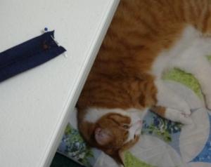 Karen's Pillow - Shortening Zipper