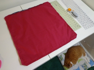 Karen's Pillow - Trim Corners