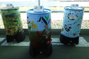 Painted Rain Barrels - Cats