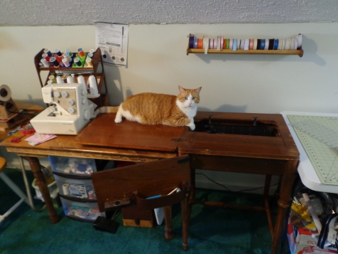 Chester Helping with Sewing Machine - 6-25-16