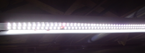 led-basement-lights