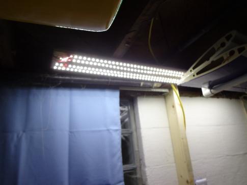 Shop Light 2-21-18