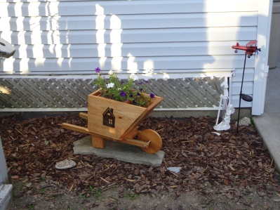 Wheelbarrow in Garden 7-9-18