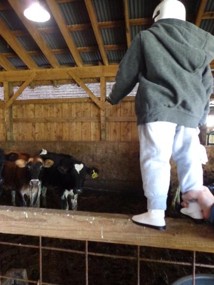 Gary in the Barn