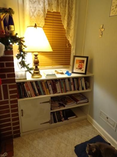 Organized Livingroom Shelf