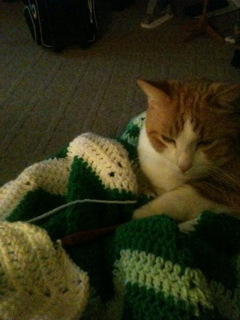 chester crochet