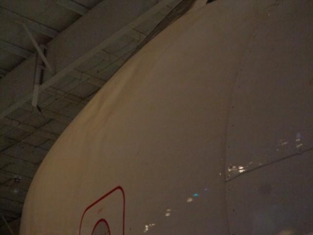 CAM UAW Bird Strike Fuselage 7-2-19