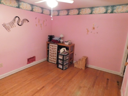 Pink Room 3 3-13-20