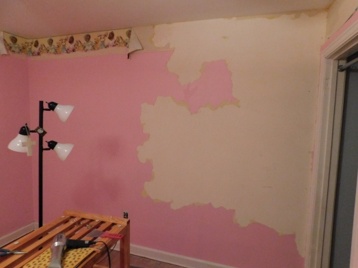 Pink Room Wall 3-15-20