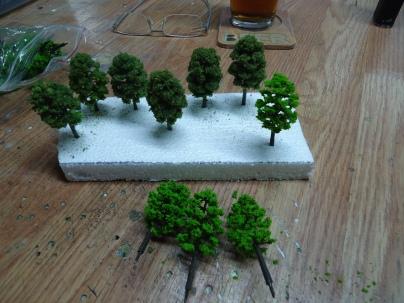 2020Layout-Oak Trees