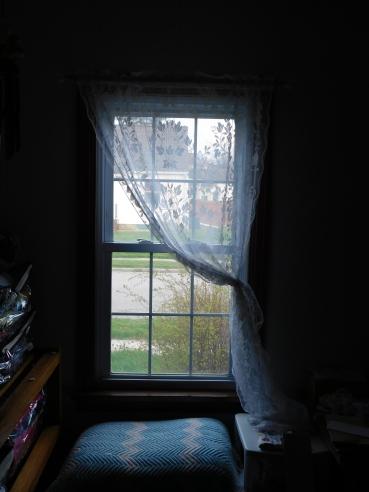 Sewing Room Window 4-18-20