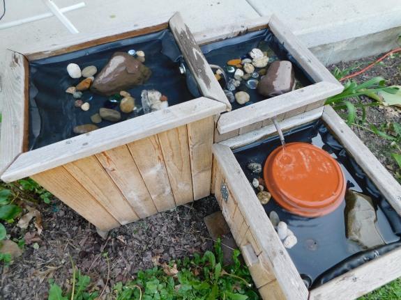 Cedar Bird Bath 5-26-20