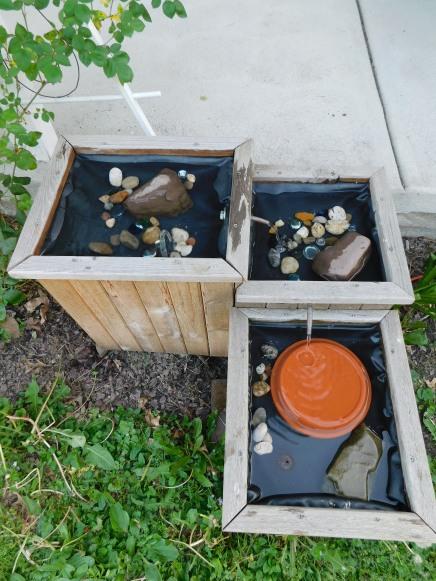 Cedar Bird Bath Running 5-26-20
