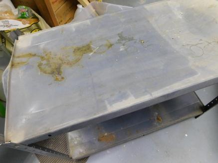 Misshapened Utility Shelf